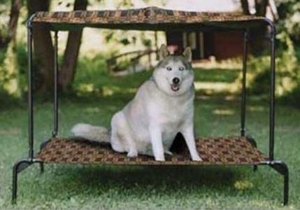 Puppywalk Breezy Bed
