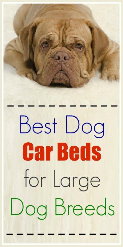 Favorite Dog Car Beds