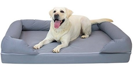 XL Dog Bed with Cute Dog