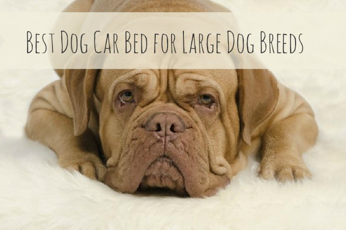 Best Dog Car Bed for Large Dog Breeds