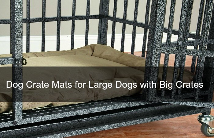 Dog Crate Mats for Large Dogs with Big Crates