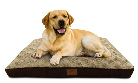 X Large Dog Bed